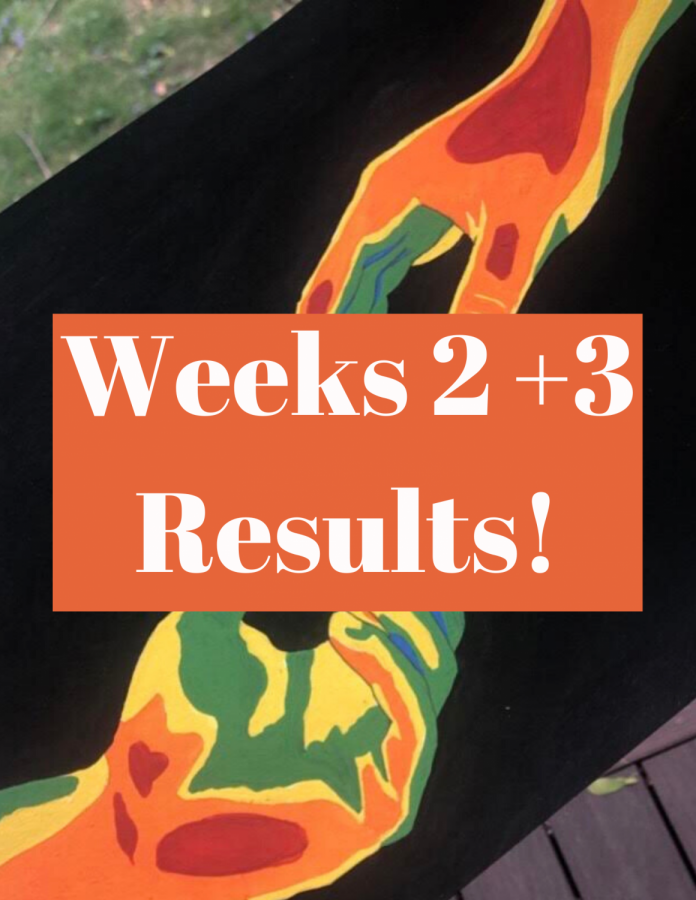 Here are the results for the competitions from the past two weeks!