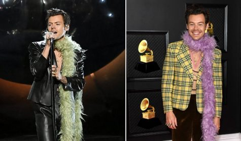 Harry Styles rocked two looks -- both topped off with a boa.